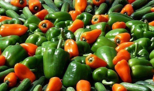 Jonathan Bailor The Calorie Myth veggies