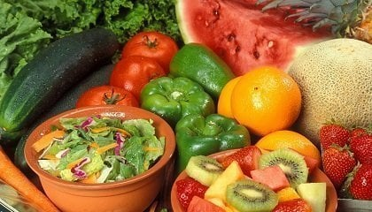 plant based eating plant-based eating
