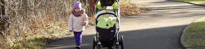 family health stroller