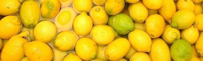Fat Burning Foods Lemons