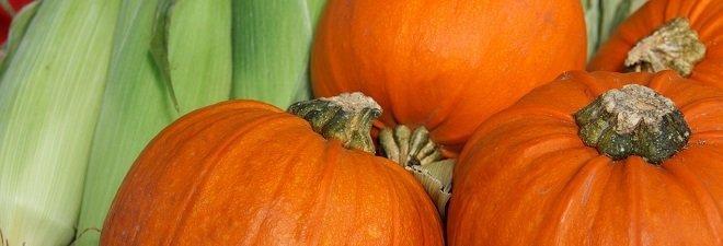 Recipes for athletes pumpkin