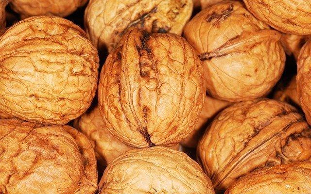 Paleo Diet Benefits Nuts