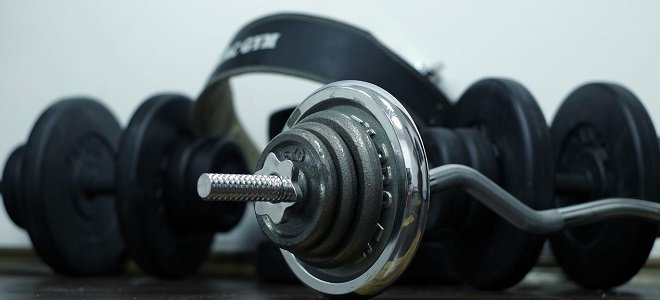 The Dumbbell Diet Why Should I Lift featured