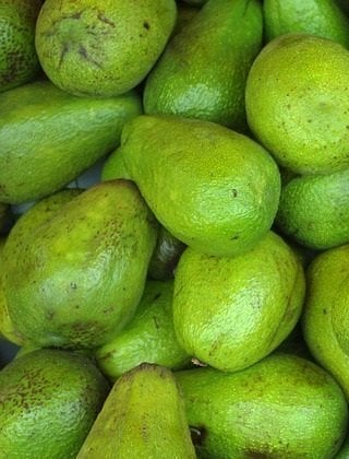 Your Body Is Slowing Down Boost Your Metabolism Naturally Featured Avocado