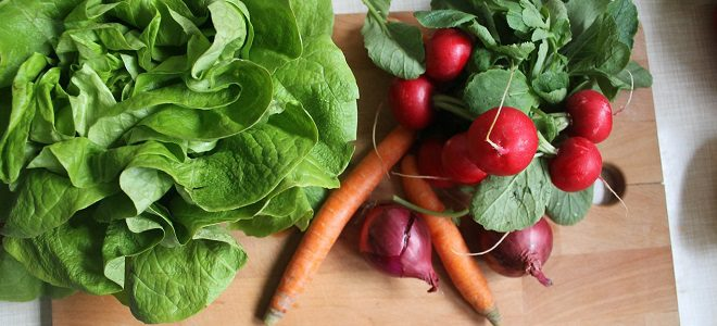9 Tips To Get Inexpensive Organic Food and Save Money