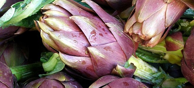 7 Amazing Natural Ways to Detox Your Body Artichoke