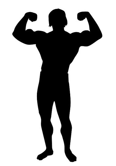 Protein and Testosterone Friends or Foes