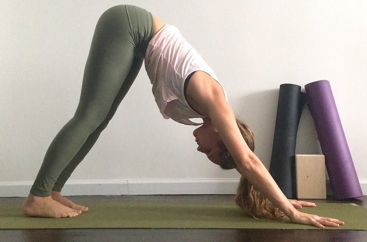 5 Fat Burning Yoga Poses You Have to Try downward dog