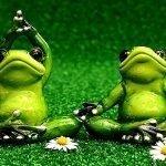 10 Useful Tips to Start Practicing Yoga