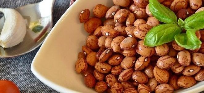 vegan protein, vegan, vegan diet, protein, plant-based protein, nutrition
