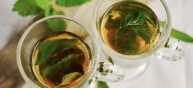 5 Amazingly Healthy Teas that are Incredible for You