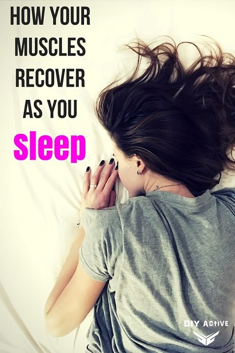 How Your Muscles Recover as You Sleep