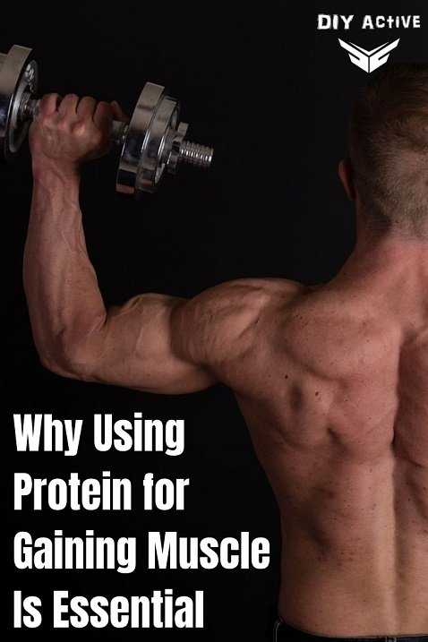 Why Using Protein for Gaining Muscle Is Essential