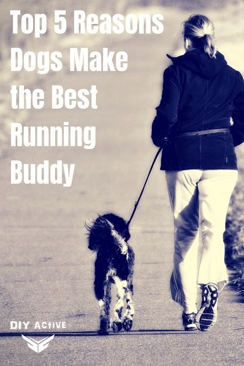 Top 5 Reasons Dogs Make the Best Running Buddy