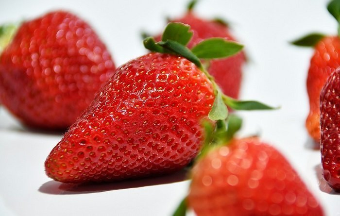 Top Foods to Eat to Keep Your Teeth Healthy