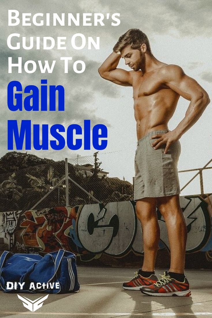 Beginner's Guide On How To Gain Muscle