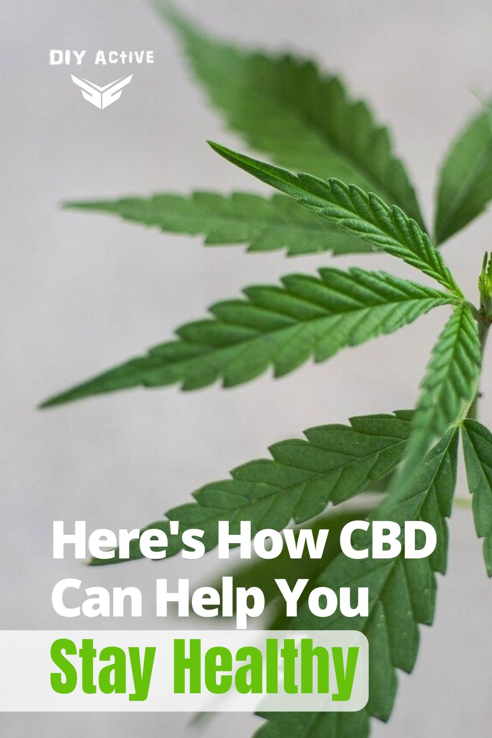Here's How CBD Can Help You Stay Healthy and Active