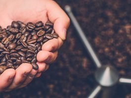 What you Need to Know Before You Buy Coffee Beans