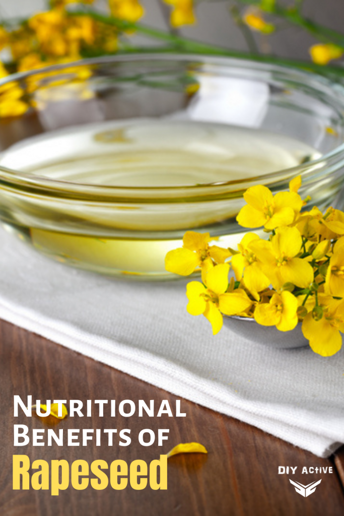 The Nutritional Benefits of Rapeseed that You Need to Know