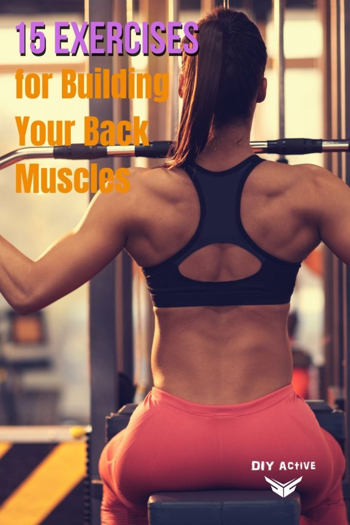 15 Exercises for Building Your Back Muscles 2