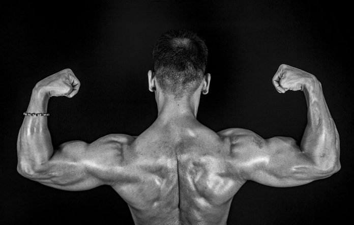 6 Things You Should Look For In Testosterone Boosting Supplements